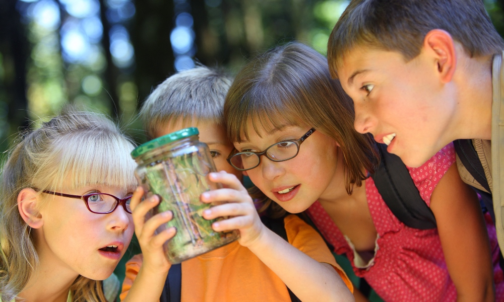 Kids Look at Bug Jar